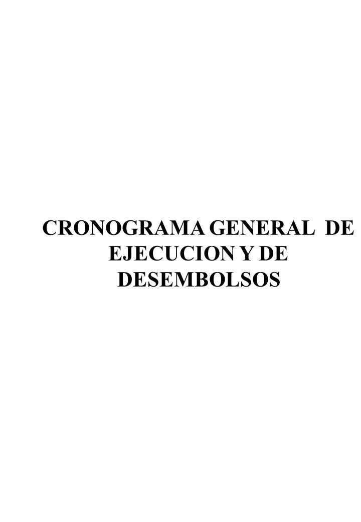 CRONOGRAMA GENERAL DE EJECUCION Y DE DESEMBOLSOS