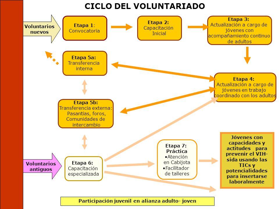 Trabajamos 3 ejes importantes: 1.La promoción de la participación juvenil. 2.El fortalecimiento de capacidades. 3.Actualización y mantenimiento del po