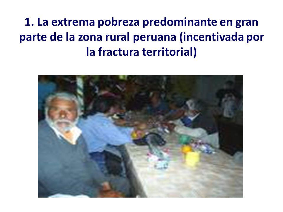 1. La extrema pobreza predominante en gran parte de la zona rural peruana (incentivada por la fractura territorial)