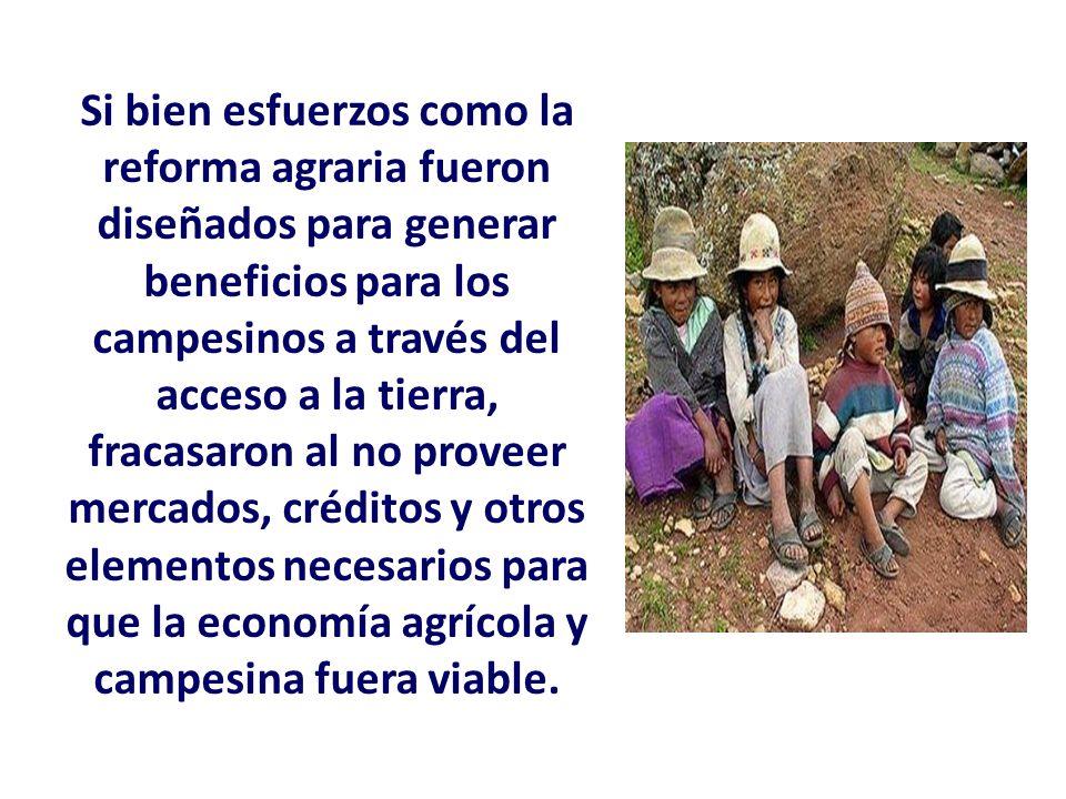 Si bien esfuerzos como la reforma agraria fueron diseñados para generar beneficios para los campesinos a través del acceso a la tierra, fracasaron al