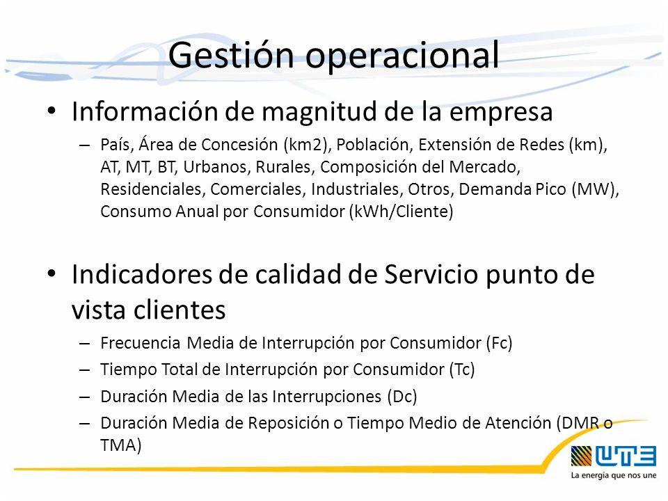 Información de magnitud de la empresa – País, Área de Concesión (km2), Población, Extensión de Redes (km), AT, MT, BT, Urbanos, Rurales, Composición d