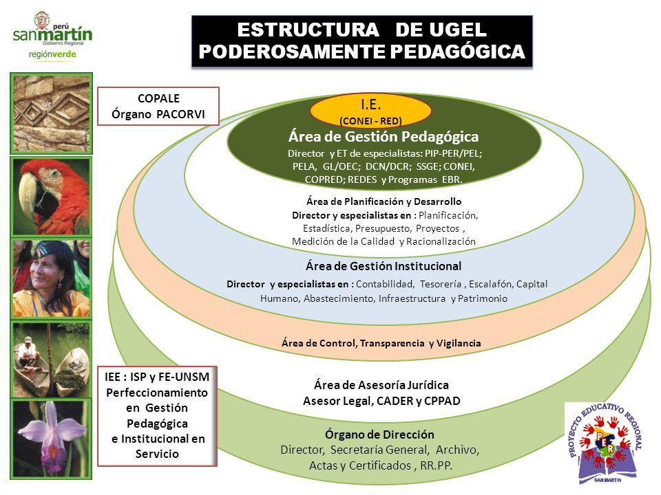 Órgano de Dirección Director, Secretaría General, Archivo, Actas y Certificados, RR.PP.