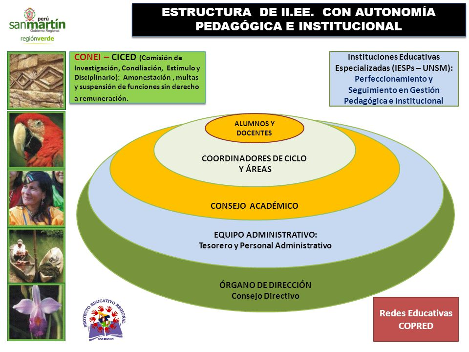ÓRGANO DE DIRECCIÓN Consejo Directivo EQUIPO ADMINISTRATIVO: Tesorero y Personal Administrativo CONSEJO ACADÉMICO ESTRUCTURA DE II.EE.