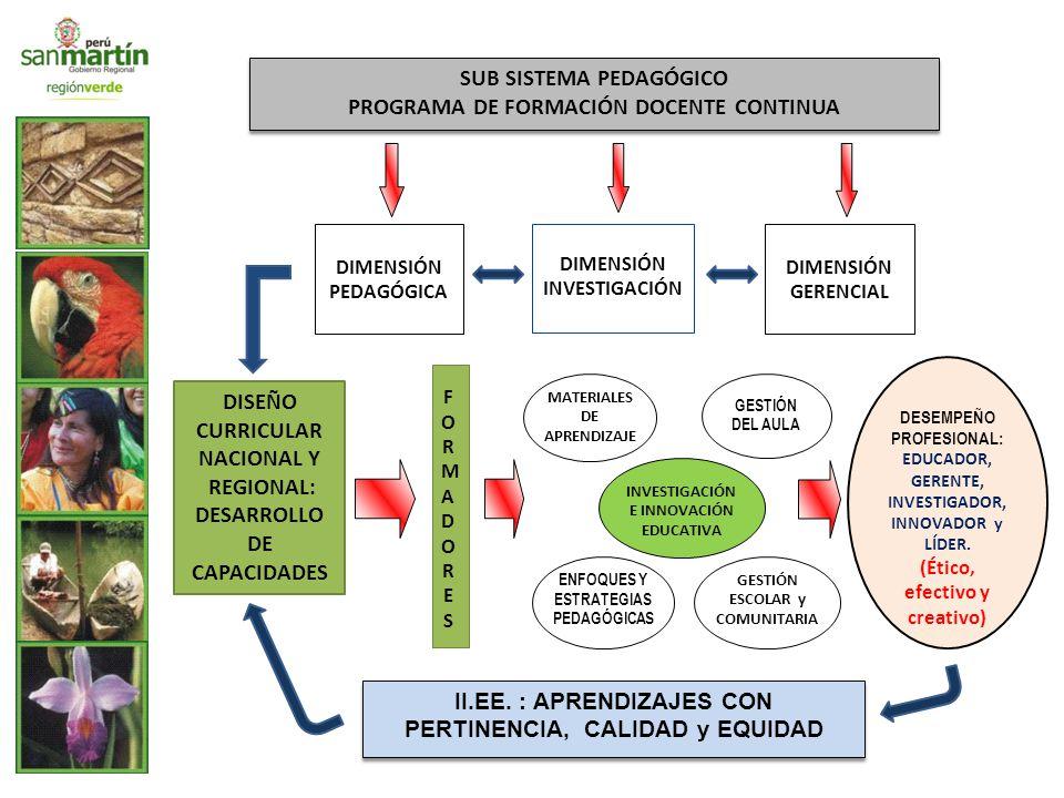 DISEÑO CURRICULAR NACIONAL Y REGIONAL: DESARROLLO DE CAPACIDADES FORMADORESFORMADORES II.EE.
