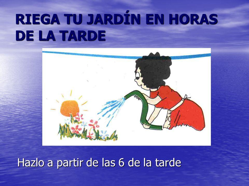 RIEGA TU JARDÍN EN HORAS DE LA TARDE Hazlo a partir de las 6 de la tarde
