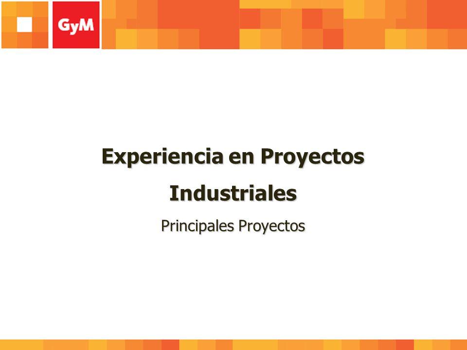 Experiencia en Proyectos Industriales Principales Proyectos