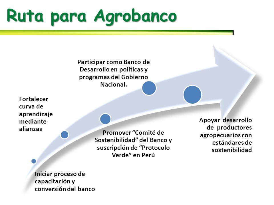 Ruta para Agrobanco Iniciar proceso de capacitación y conversión del banco Fortalecer curva de aprendizaje mediante alianzas Promover Comité de Sostenibilidad del Banco y suscripción de Protocolo Verde en Perú Participar como Banco de Desarrollo en políticas y programas del Gobierno Nacional.