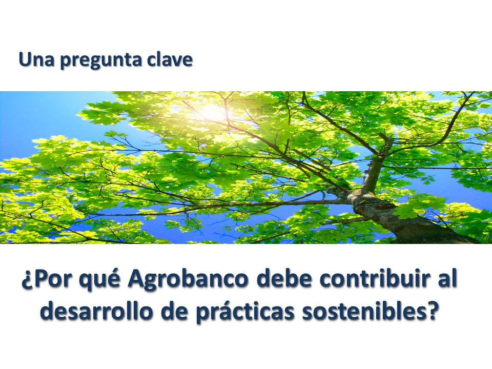 Reto del 2014 convertirnos en un banco verde y ético, una manera más comprometida de servir al Perú rural …..