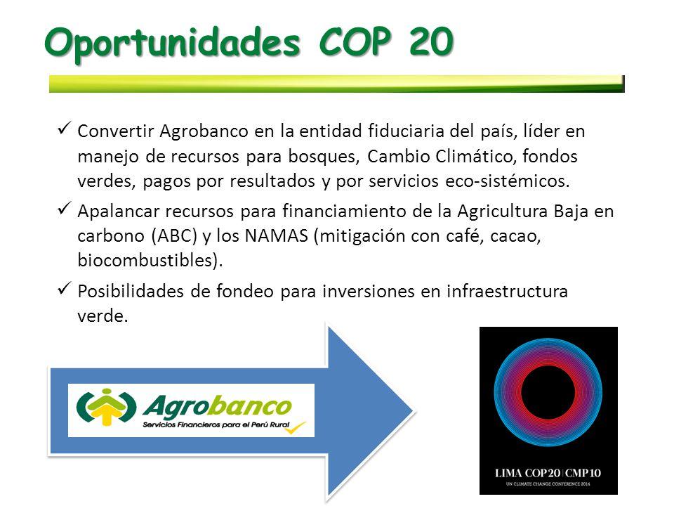 Oportunidades COP 20 Convertir Agrobanco en la entidad fiduciaria del país, líder en manejo de recursos para bosques, Cambio Climático, fondos verdes, pagos por resultados y por servicios eco-sistémicos.