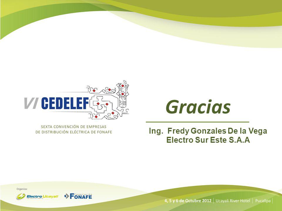 Gracias Ing. Fredy Gonzales De la Vega Electro Sur Este S.A.A