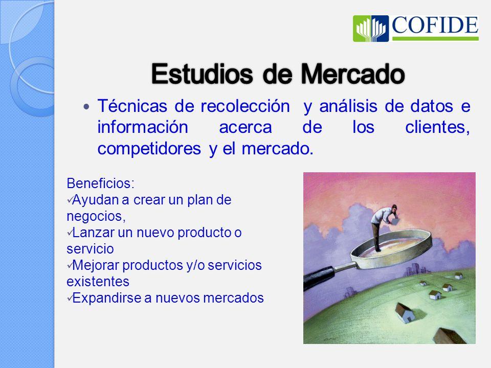 Técnicas de recolección y análisis de datos e información acerca de los clientes, competidores y el mercado.
