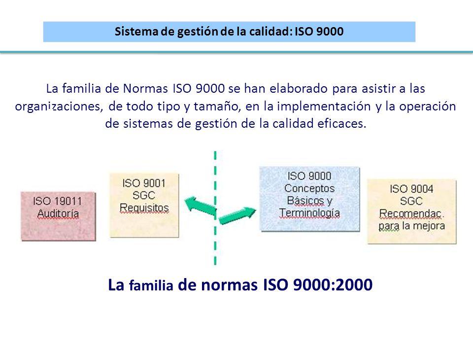 La familia de Normas ISO 9000 se han elaborado para asistir a las organizaciones, de todo tipo y tamaño, en la implementación y la operación de sistem