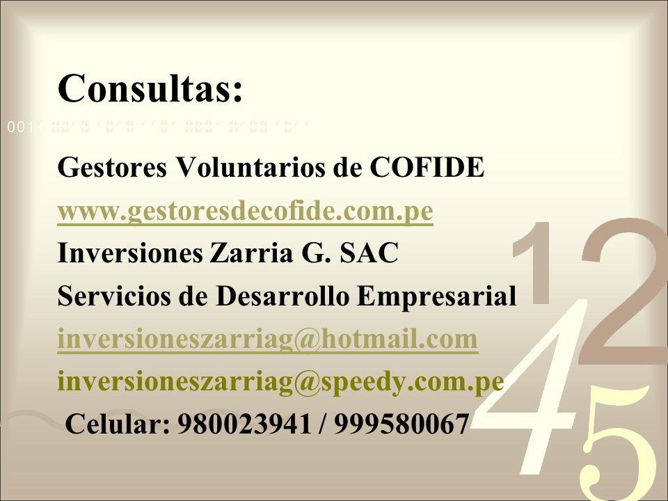 Consultas: Gestores Voluntarios de COFIDE www.gestoresdecofide.com.pe Inversiones Zarria G. SAC Servicios de Desarrollo Empresarial inversioneszarriag