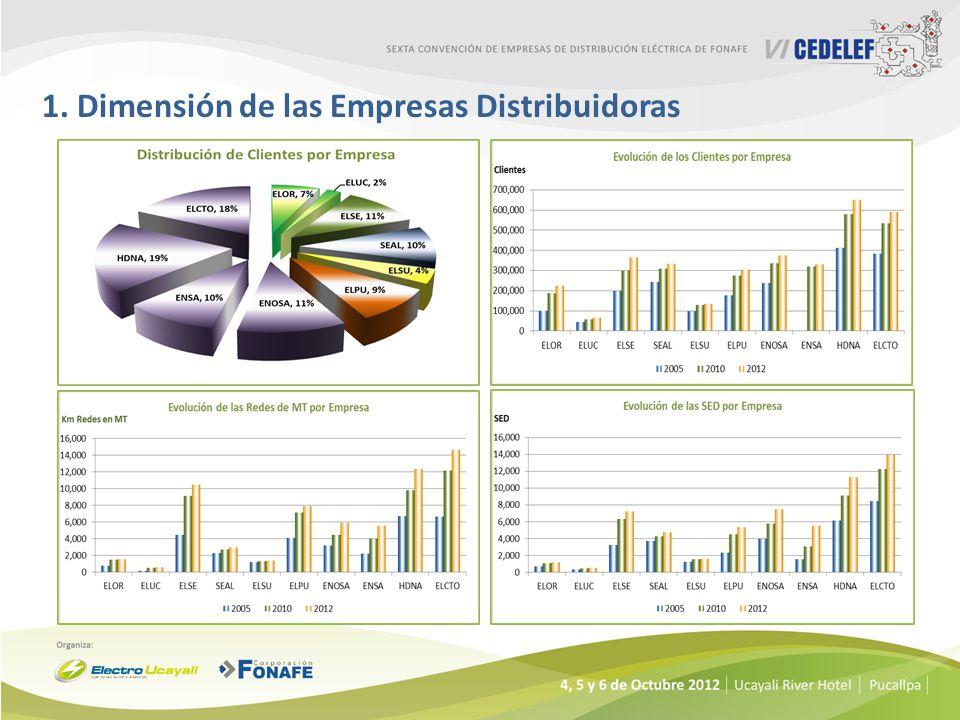 1. Dimensión de las Empresas Distribuidoras