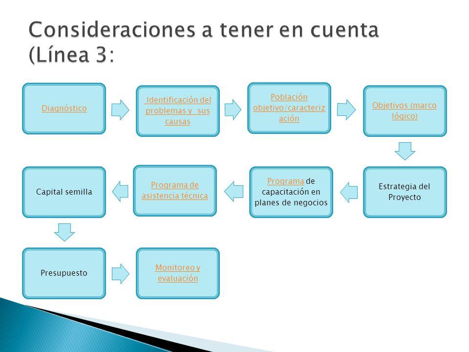 Diagnóstico Identificación del problemas y sus causas Población objetivo/caracteriz ación Objetivos (marco lógico) Estrategia del Proyecto ProgramaPro