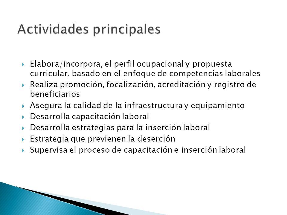 Elabora/incorpora, el perfil ocupacional y propuesta curricular, basado en el enfoque de competencias laborales Realiza promoción, focalización, acred