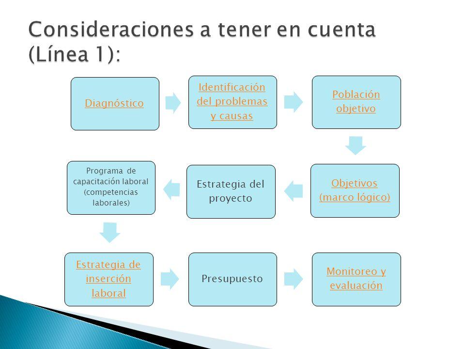 Diagnóstico Identificación del problemas y causas Población objetivo Objetivos (marco lógico) Estrategia del proyecto Programa de capacitación laboral