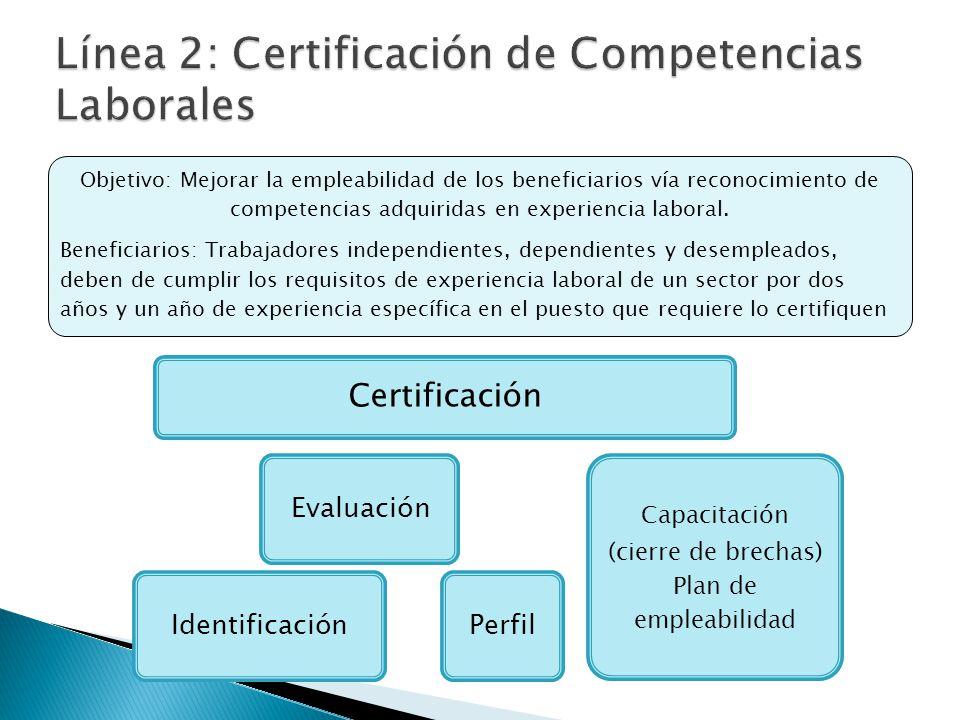 Objetivo: Mejorar la empleabilidad de los beneficiarios vía reconocimiento de competencias adquiridas en experiencia laboral. Beneficiarios: Trabajado