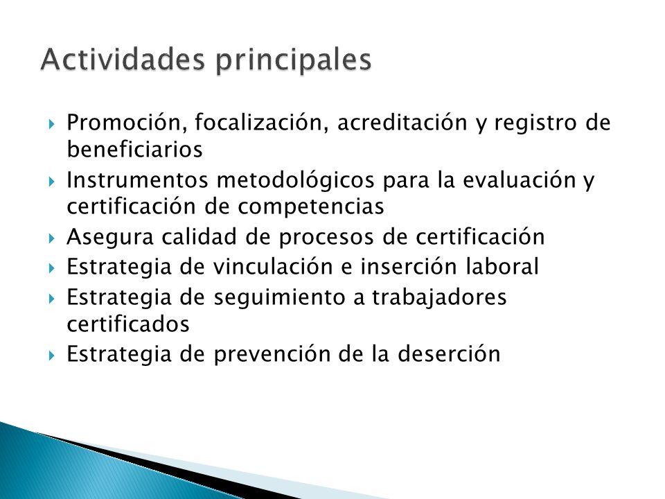 Promoción, focalización, acreditación y registro de beneficiarios Instrumentos metodológicos para la evaluación y certificación de competencias Asegur