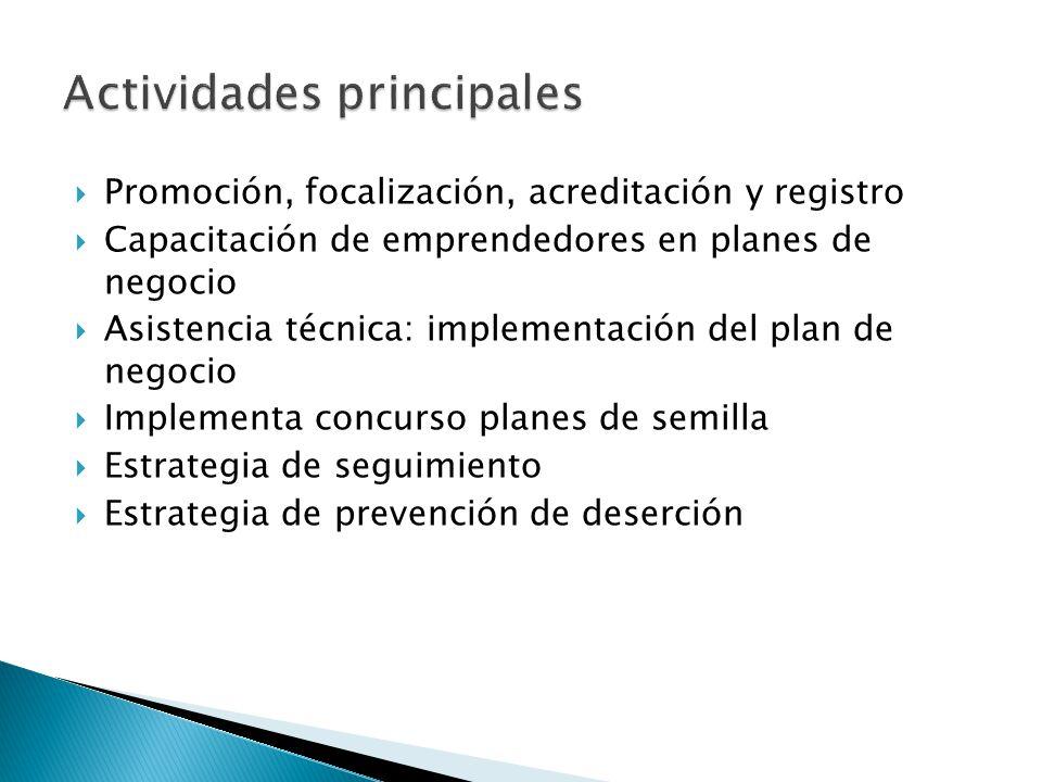 Promoción, focalización, acreditación y registro Capacitación de emprendedores en planes de negocio Asistencia técnica: implementación del plan de neg