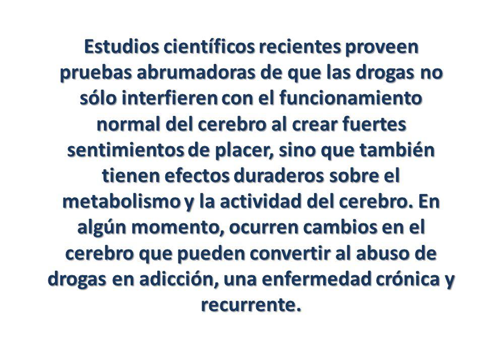 Estudios científicos recientes proveen pruebas abrumadoras de que las drogas no sólo interfieren con el funcionamiento normal del cerebro al crear fue