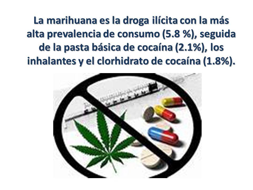 La marihuana es la droga ilícita con la más alta prevalencia de consumo (5.8 %), seguida de la pasta básica de cocaína (2.1%), los inhalantes y el clo