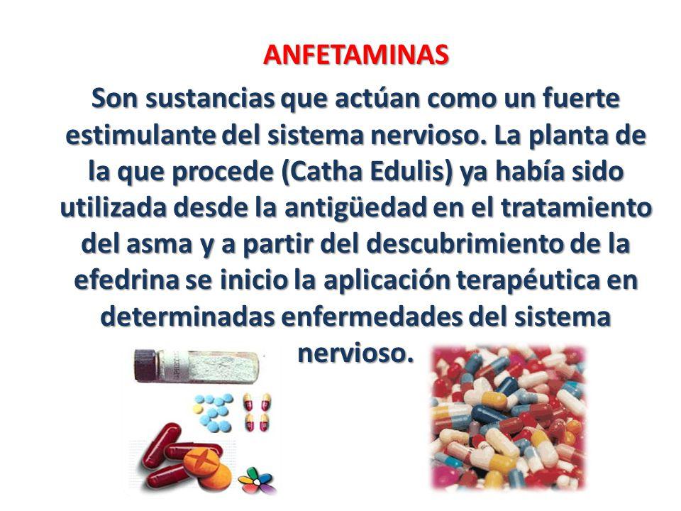 ANFETAMINAS Son sustancias que actúan como un fuerte estimulante del sistema nervioso. La planta de la que procede (Catha Edulis) ya había sido utiliz