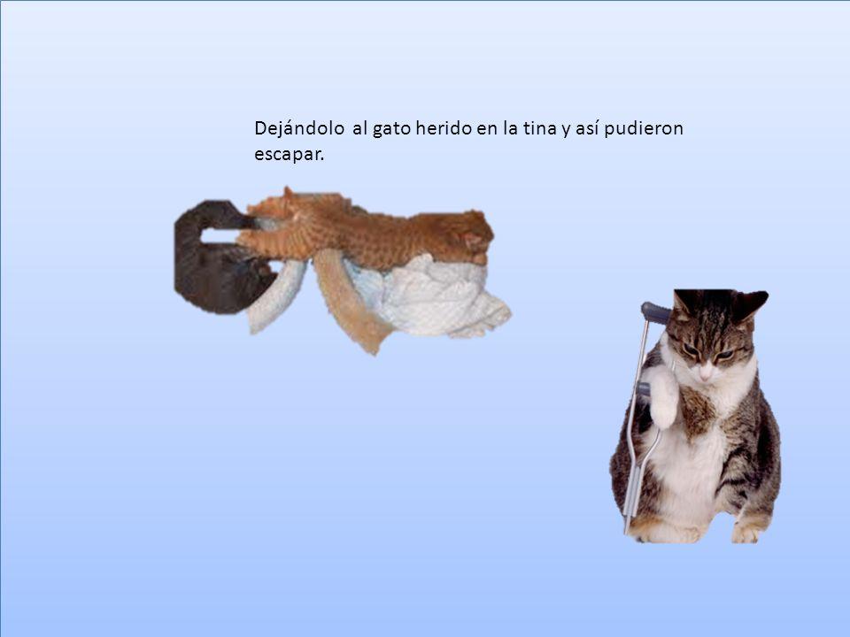 Pero un patito, el más astuto se dio cuenta de lo mentiroso que era y advirtió a su compañero para esconderse en una tina, pero el gato los vio y a picotazos los patitos tuvieron que defenderse.