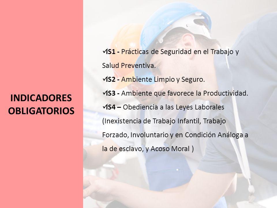 INDICADORES OBLIGATORIOS IS1 - Prácticas de Seguridad en el Trabajo y Salud Preventiva.