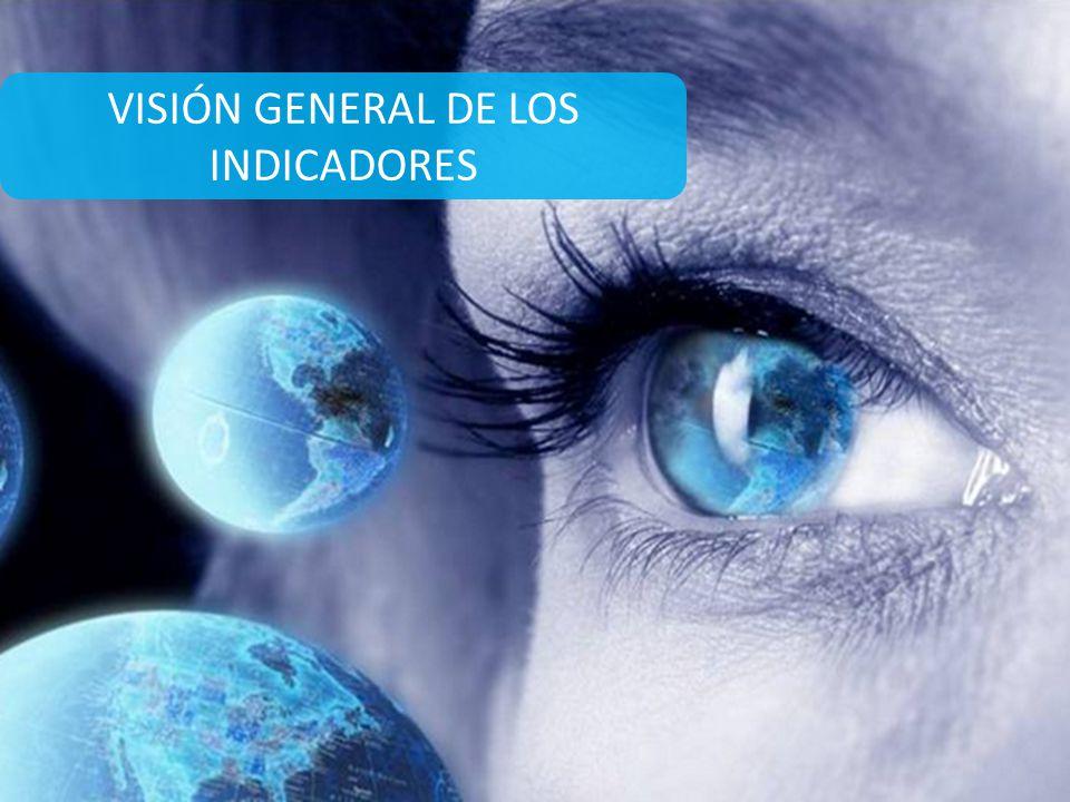 VISIÓN GENERAL DE LOS INDICADORES
