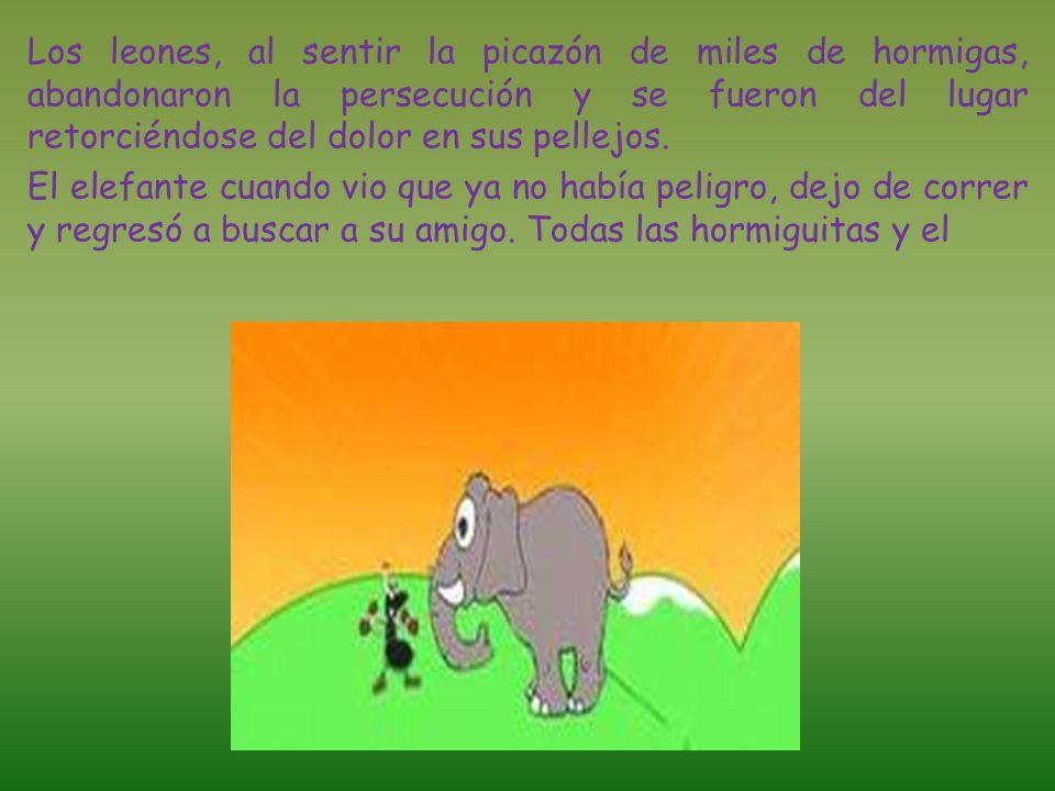 Así fue que todas las hormigas de la aldea corrieron en auxilio de los amigos, vieron a los leones que perseguían al elefante y como las hormigas anda