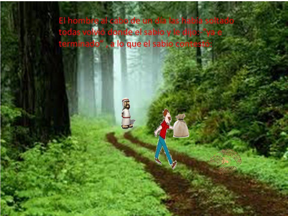 Tiempo después se arrepintió de la ruina que trajo con sus calumnias a ese amigo, y visito a un hombre sabio a quien le dijo: -Quiero arreglar todo el