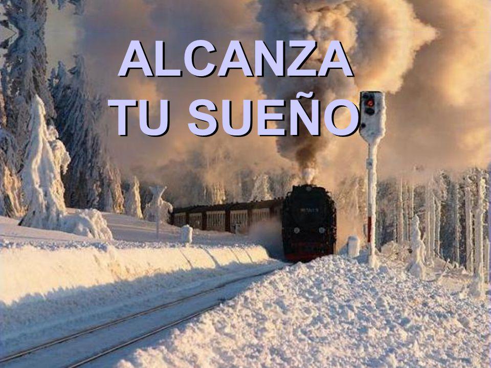ALCANZA TU SUEÑO ALCANZA TU SUEÑO