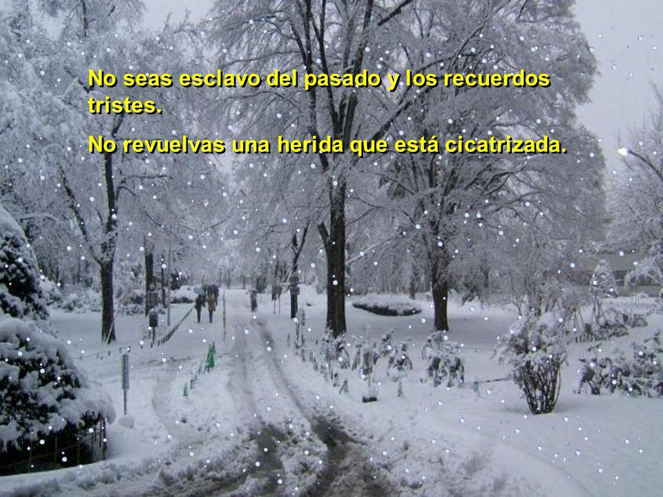 No esperes con paciencia a que maduren los frutos...