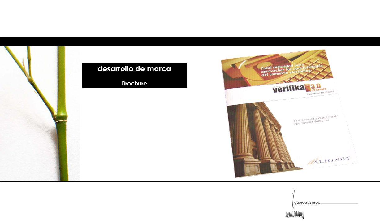 desarrollo de marca Brochure