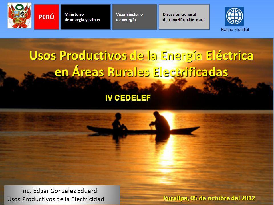 Usos Productivos de la Energía Eléctrica en Áreas Rurales Electrificadas Pucallpa, 05 de octubre del 2012 Ing. Edgar González Eduard Usos Productivos