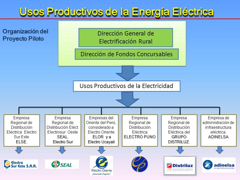 Empresas del Oriente del Perú, considerado a Electro Oriente ELOR y a Electro Ucayali Empresa de administración de infraestructura eléctrica.ADINELSA