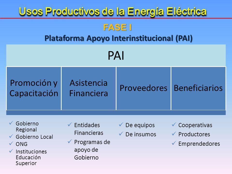 Plataforma Apoyo Interinstitucional (PAI) PAI Promoción y Capacitación Asistencia Financiera ProveedoresBeneficiarios Gobierno Regional Gobierno Local