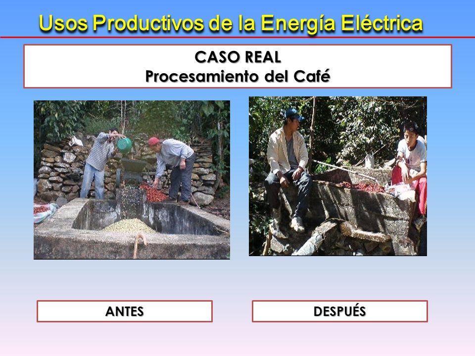 CASO REAL Procesamiento del Caf é ANTESDESPUÉS Usos Productivos de la Energía Eléctrica