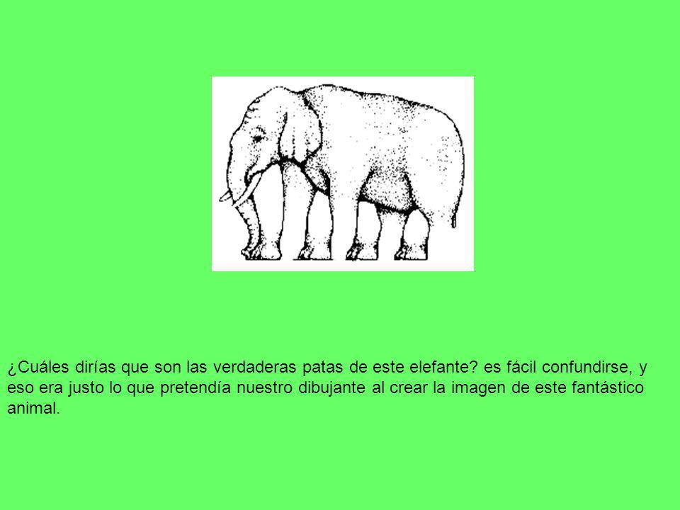 ¿Cuáles dirías que son las verdaderas patas de este elefante? es fácil confundirse, y eso era justo lo que pretendía nuestro dibujante al crear la ima