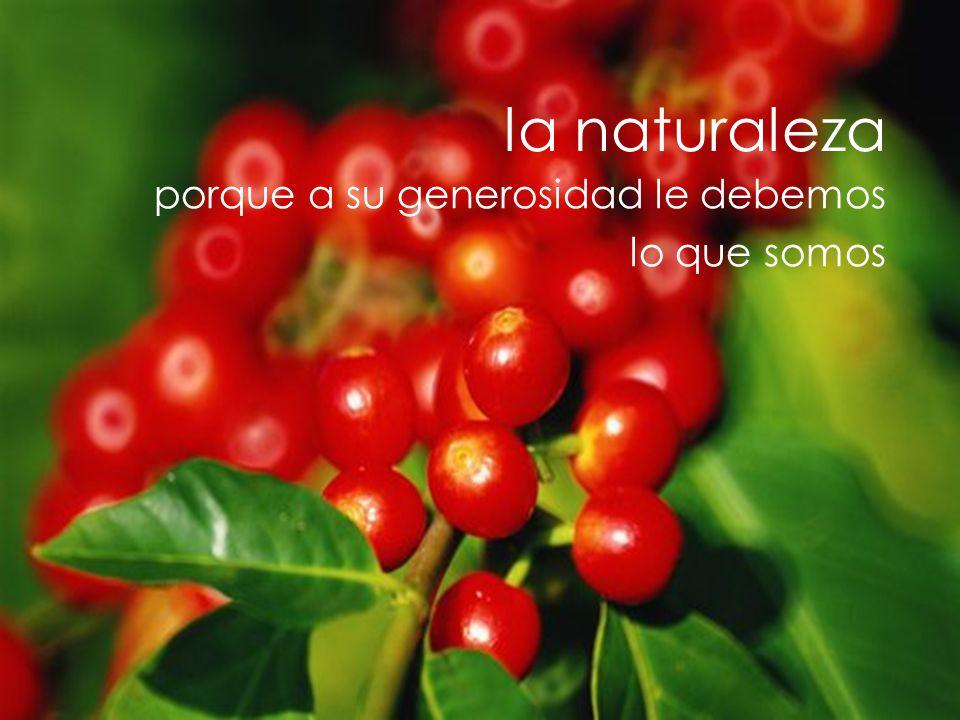 la naturaleza porque a su generosidad le debemos lo que somos