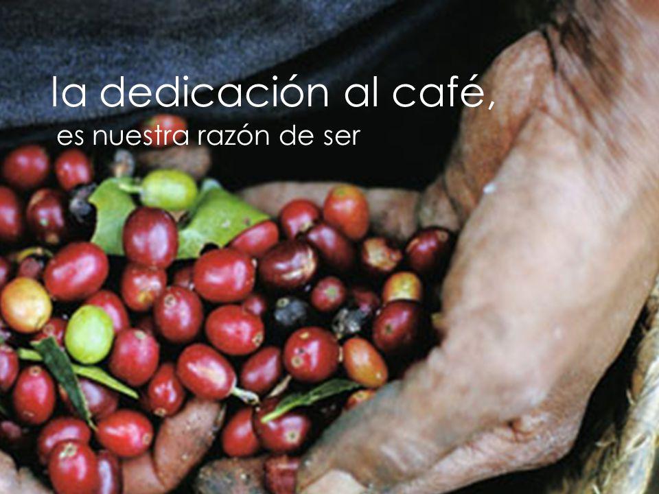 la dedicación al café, es nuestra razón de ser