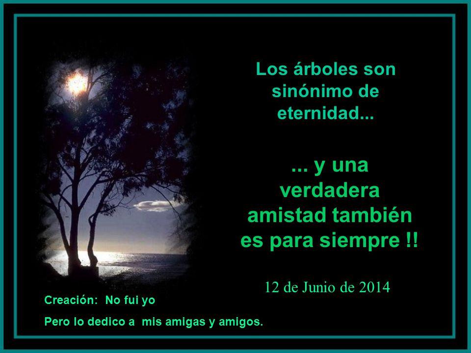 Los árboles son sinónimo de eternidad......y una verdadera amistad también es para siempre !.