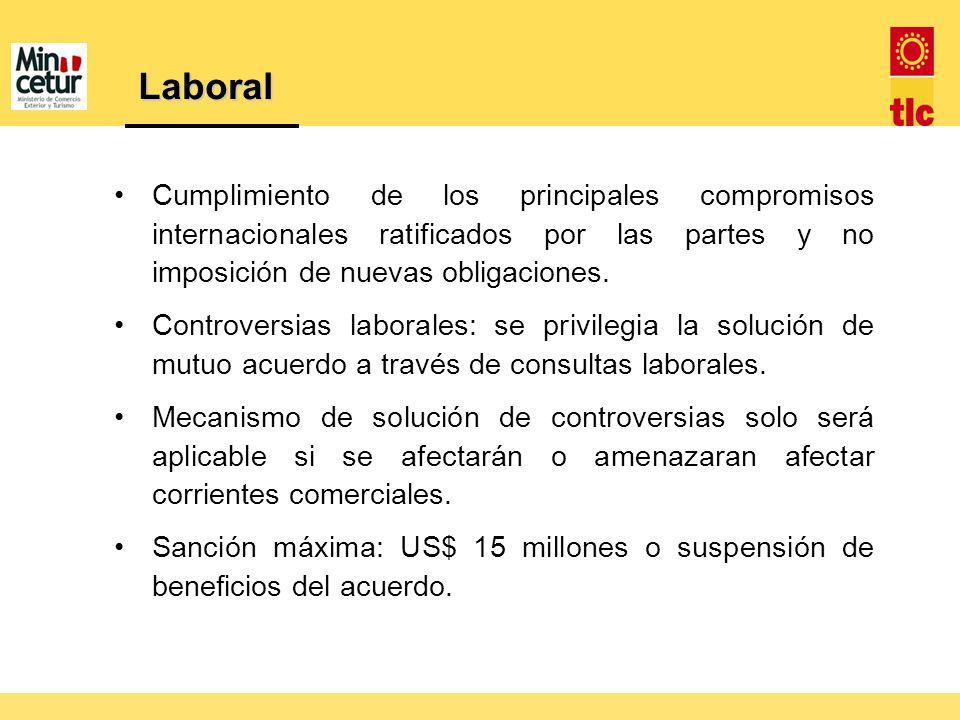 Cumplimiento de los principales compromisos internacionales ratificados por las partes y no imposición de nuevas obligaciones. Controversias laborales