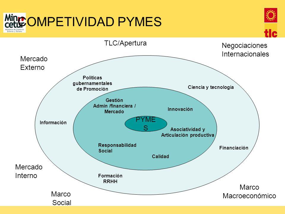 TLC/Apertura Negociaciones Internacionales Mercado Externo Mercado Interno Marco Macroeconómico Marco Social COMPETIVIDAD PYMES Políticas gubernamenta