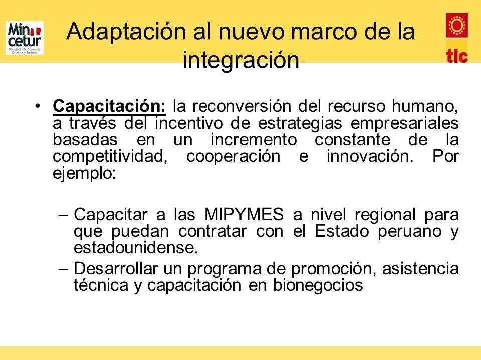 Adaptación al nuevo marco de la integración Capacitación: la reconversión del recurso humano, a través del incentivo de estrategias empresariales basa