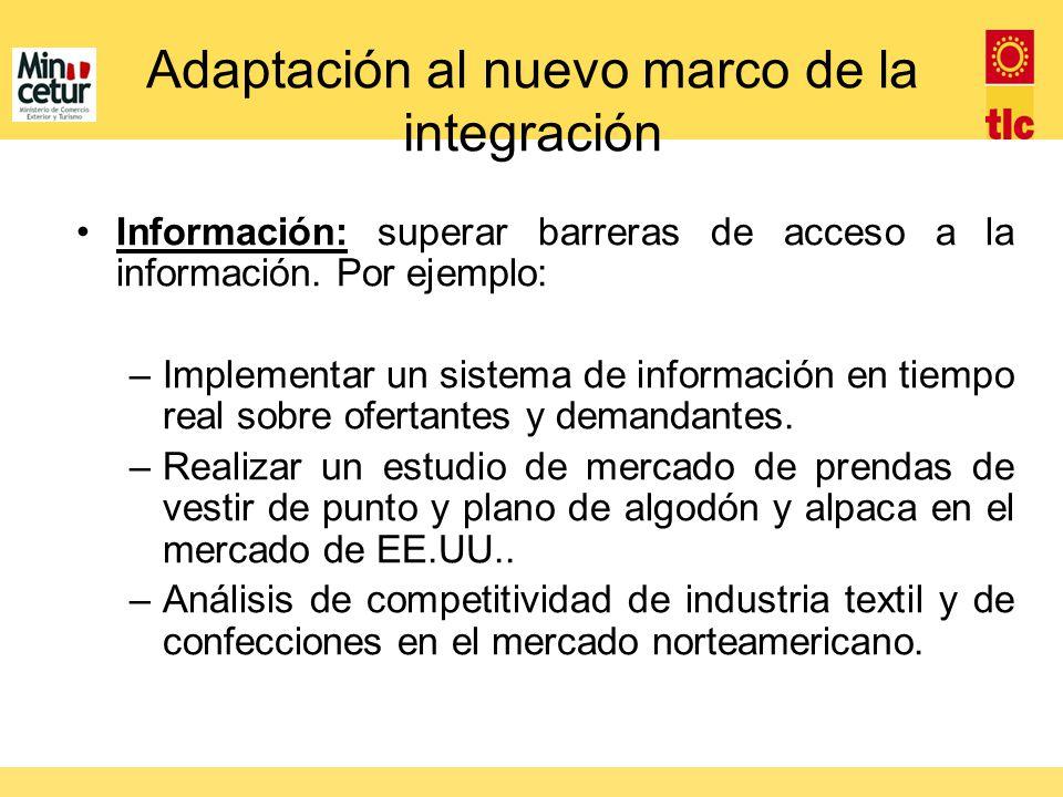 Adaptación al nuevo marco de la integración Información: superar barreras de acceso a la información. Por ejemplo: –Implementar un sistema de informac