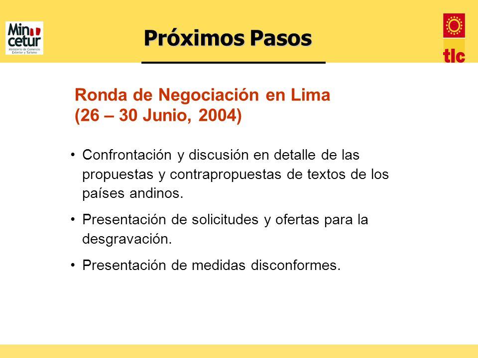 Confrontación y discusión en detalle de las propuestas y contrapropuestas de textos de los países andinos. Presentación de solicitudes y ofertas para