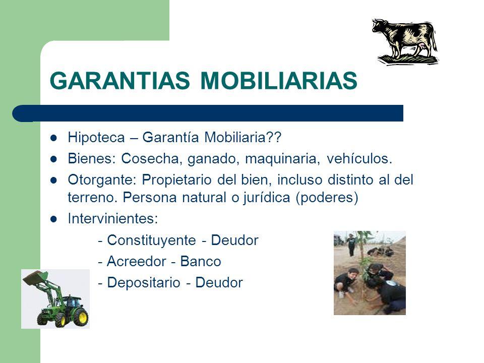GARANTIAS MOBILIARIAS Hipoteca – Garantía Mobiliaria?? Bienes: Cosecha, ganado, maquinaria, vehículos. Otorgante: Propietario del bien, incluso distin
