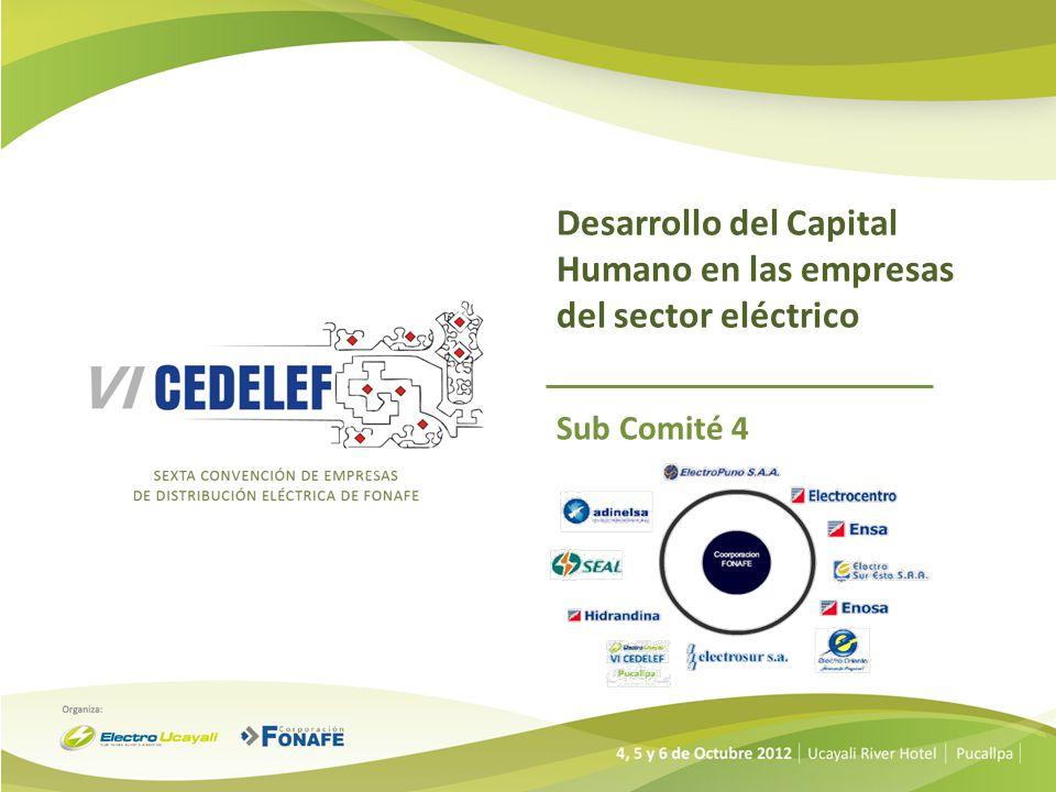 Desarrollo del Capital Humano en las empresas del sector eléctrico Sub Comité 4